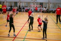 HUK_Haandbolddag_2019-28